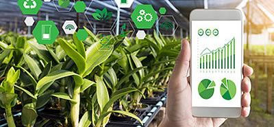 Pilot 14 Big Data and IoT for the Agricultural Insurance Industry